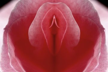5 things about the vagina